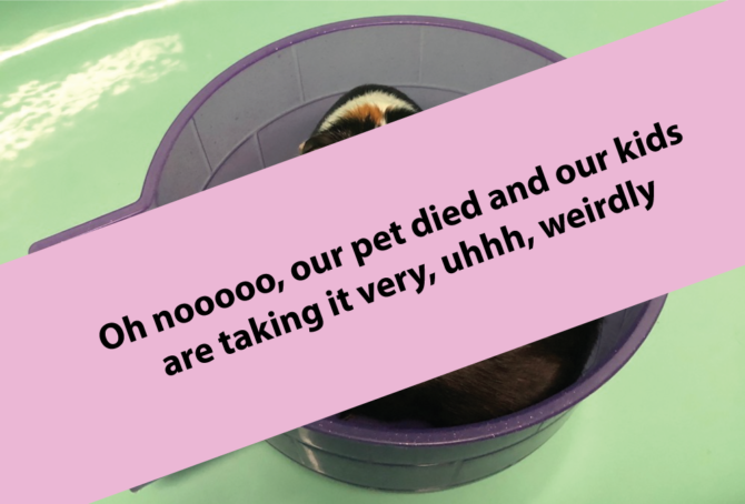 Oh nooooo, our pet died and the kids are taking it very, uhhh, weirdly
